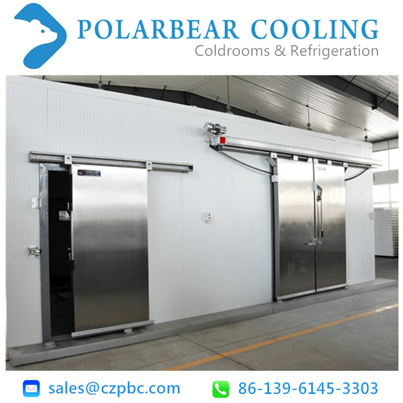 Electric/Manual sliding door for cold coolroom
