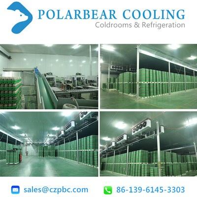 Customized cold chamber according to requirement